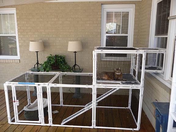 Outdoor Window Box Cat